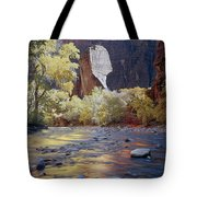 312447-the Pulpit  Tote Bag