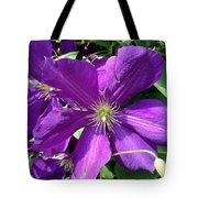 The Purple Sunny Day  Tote Bag