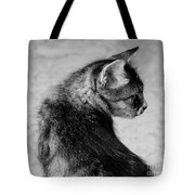 The Purrfect Glance Back Tote Bag