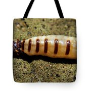 The Queen Of Termites Tote Bag