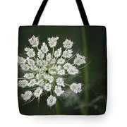 The Queens Lace Tote Bag