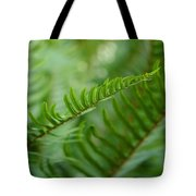The Quiet Beauty Of Ferns Tote Bag