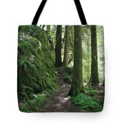 The Quiet Forest Tote Bag