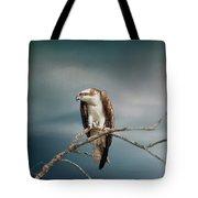 The Raptor - Osprey Tote Bag