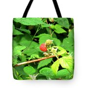 The Rasberry Patch Tote Bag