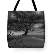 The Raven's Night Tote Bag