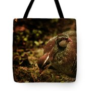 The Redlegged Partridges Tote Bag