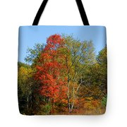 The Reds And Greens Of Autumn Tote Bag