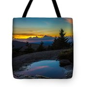 The Reflective Pool Tote Bag