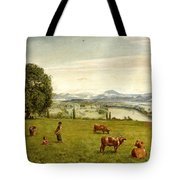The Rhine Valley Near Sackingen Tote Bag
