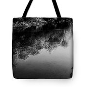 The River In Black And White Tote Bag