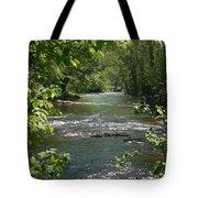 The River In Spring Tote Bag