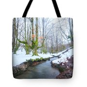 The River In The Otzarreta Forest With Snow Tote Bag