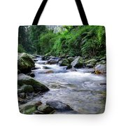 The River Sings Tote Bag