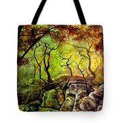 The Rocks In Starachowice Tote Bag