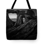 The Roots Of The Sleeping Giant Bw Tote Bag
