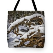 The Roots Of Winter Tote Bag