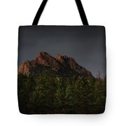 The Rugged Beauty Of Long Scraggy Tote Bag