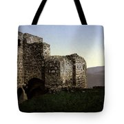 The Ruins Jezreel Holy Land Tote Bag
