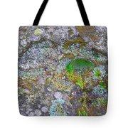 The Sacred Mountain Tote Bag