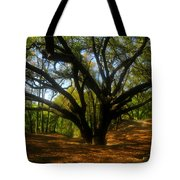 The Sacred Oak Tote Bag by David Lee Thompson