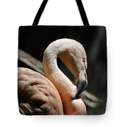 The Sacred Old Flamingoes Tote Bag