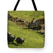 the Safari park Tote Bag