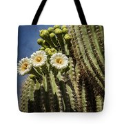 The Saguaro Cactus  Tote Bag