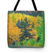 The Sanctity Of Nature Reified Through A Photographic Image  Tote Bag