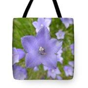 The Scottish Bellflower Tote Bag