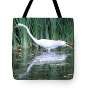 The Search For Food Continues Tote Bag