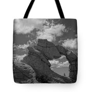 The Secret Arch Tote Bag