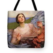 The Sense Of Sight By Annie Swynnerton  Tote Bag
