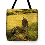 The Sentinel Tote Bag