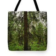 The Shadow Of The Spruce Tote Bag