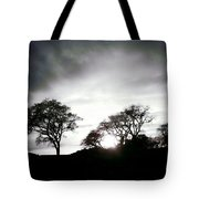 The Shine  Tote Bag