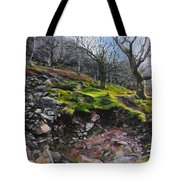 The Side Of The Valley Tote Bag