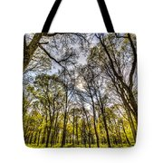 The Silent Forest  Tote Bag