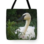 The Silent Trumpet Tote Bag