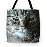 The Skeptic Tote Bag