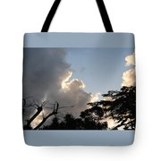 The Sky And The Trees Tote Bag