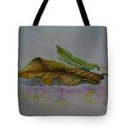 The Sleeping Leaf Tote Bag