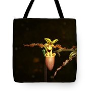 The Slippers Tote Bag