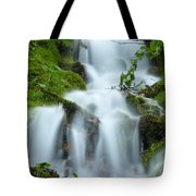 The Slithering Mist Tote Bag