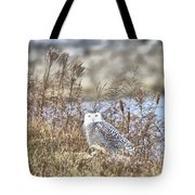 The Snowy Owl Tote Bag