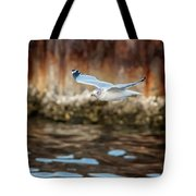 The Soaring Gull Tote Bag