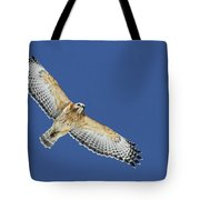 The Spirit Of The Hawk Tote Bag