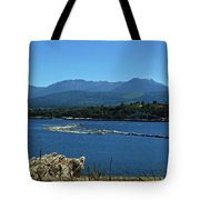 The Spit Tote Bag