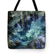 The Springs Tote Bag
