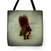 The Squirrel In The Winter Garden Tote Bag